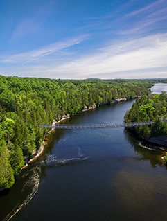 Drone view of suspension bridge over Trent River in summer