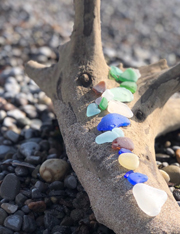beach glass lined up on driftwood