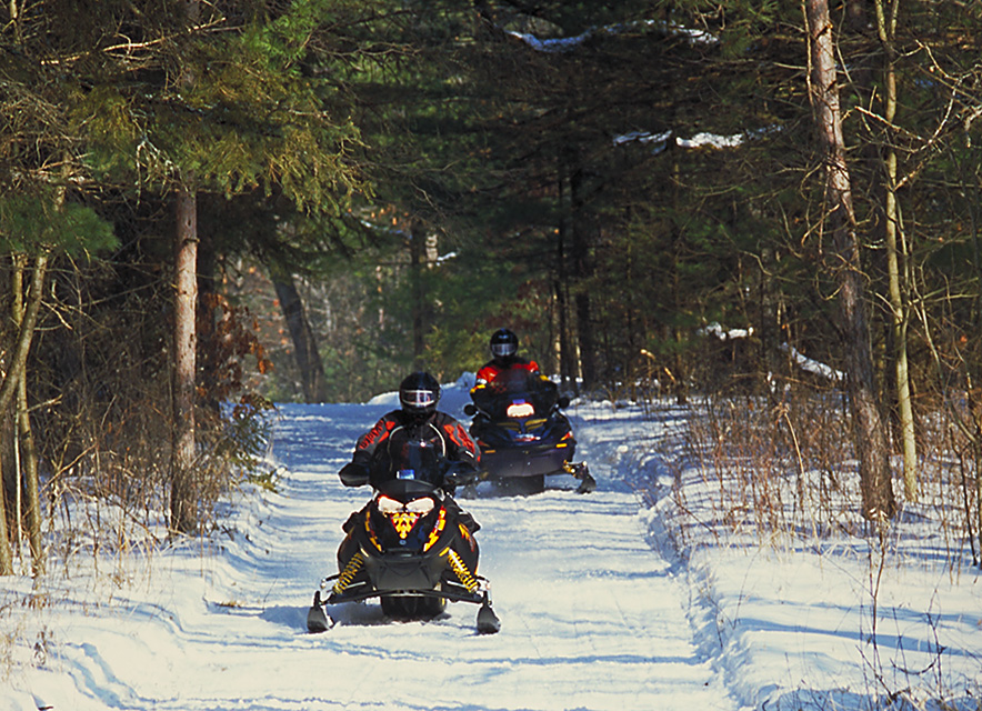 Two people snowmobiling on wooded trail