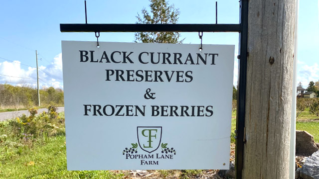 sign reading Black Currant Preserves and frozen berries available at local farm