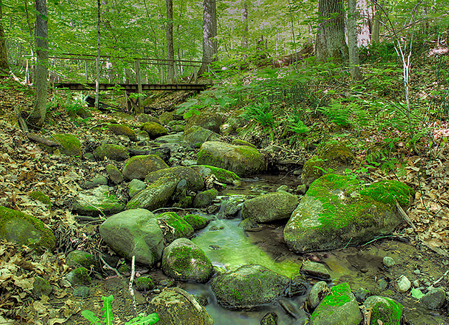 Bridge over creek with large rocks, Peter's Woods hiking trail