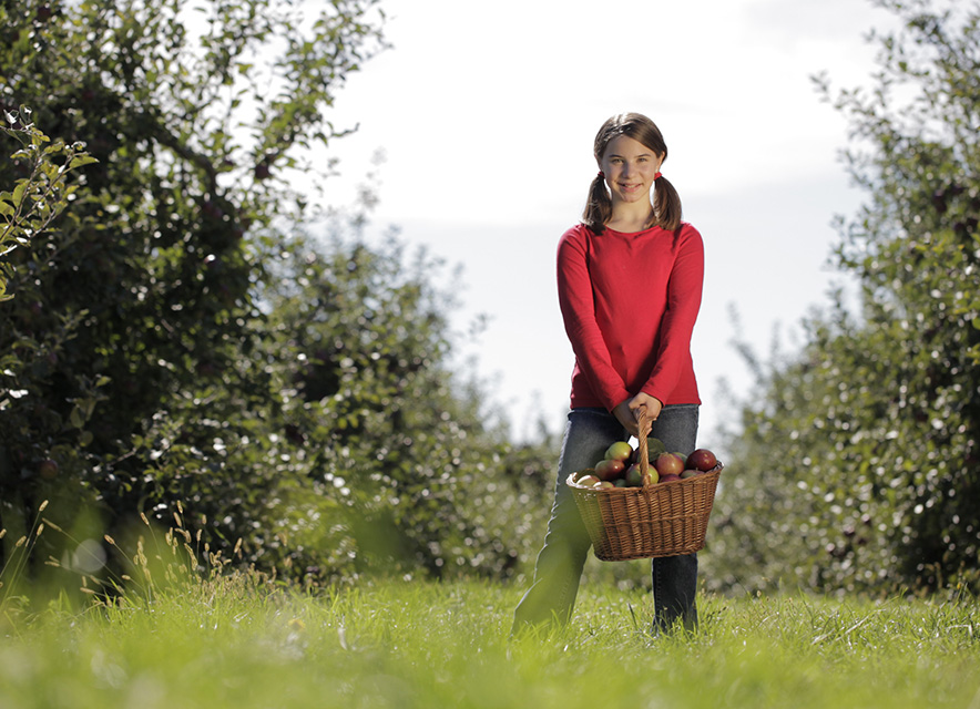 Girl with basket of apples in orchard