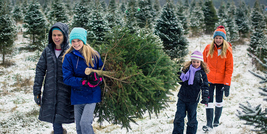 Mother and daughter carrying freshly cut Christmas Tree at Christmas Tree farm in snow
