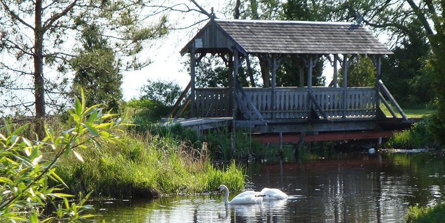 Covered bridge over pond in nature sanctuary