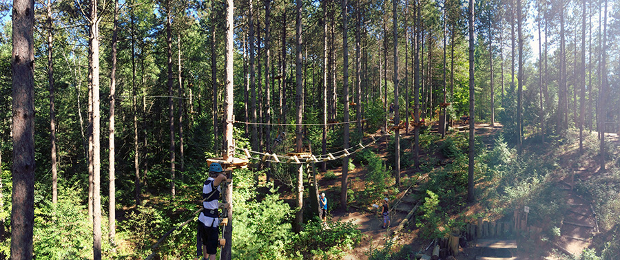 Overview of Treetop Trekking aerial course in wooded area with ziplines and bridges