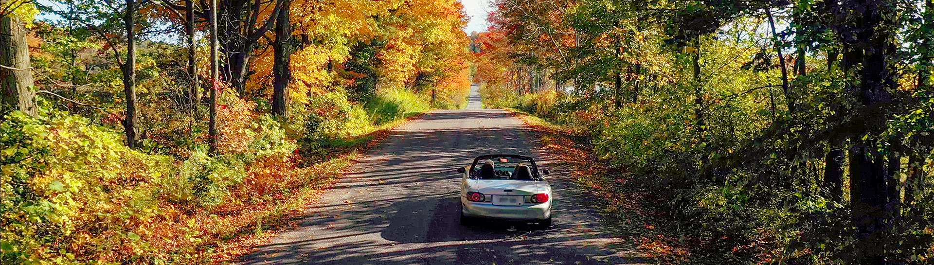 Rear of convertible on country road in fall
