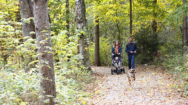 Young family walking on accessible forest trail