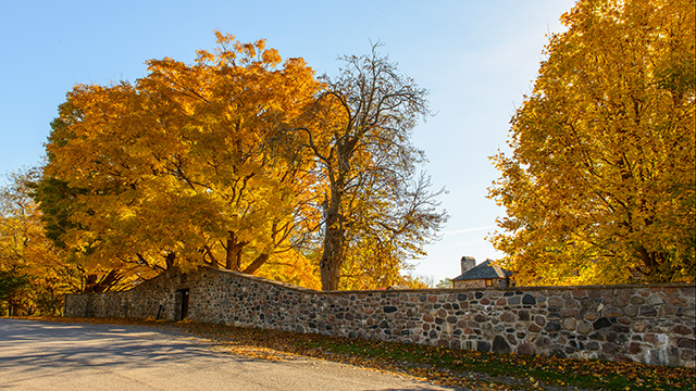 Stone wall and fall colours outside Ste Anne's Spa