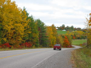 red truck driving on road with fall coloured trees lining it