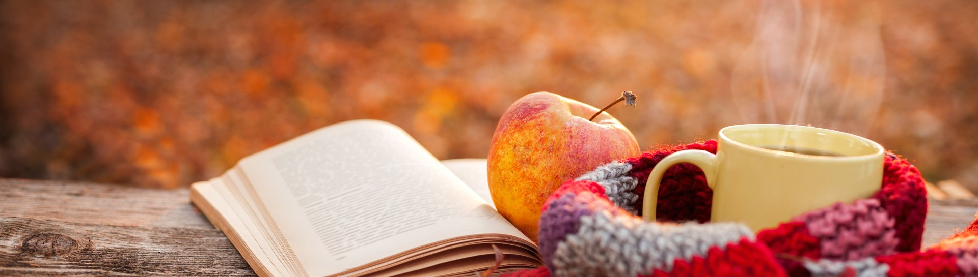 staged image of coffee, apple and open book on plaid blanket outside in fall