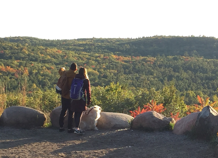 man woman and dog overlooking rolling hills with fall colour