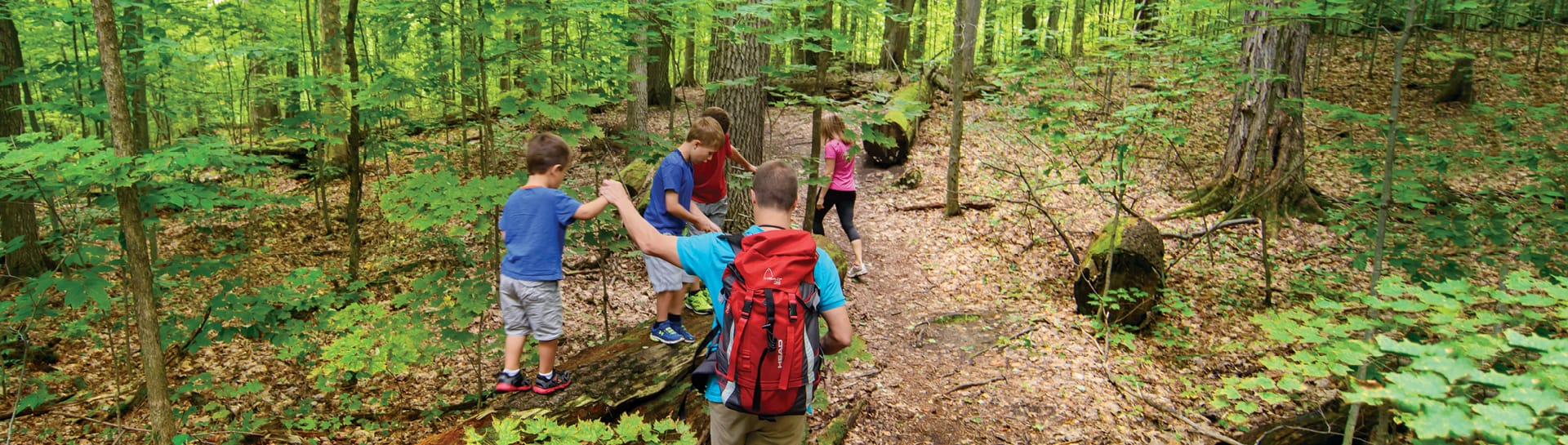 Family with three boys walking on log in wooded trail