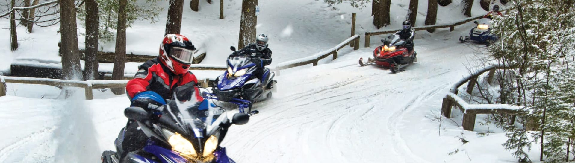 Group of 4 snowmobilers on winter trail through forested area