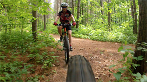 person riding bike on pine carpeted trail in forest
