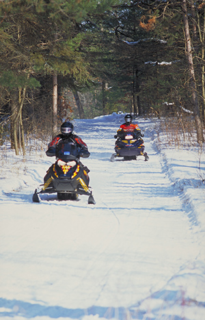 two people snowmobiling through the forest