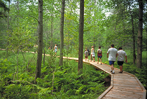 Group of people hiking on a boardwalk
