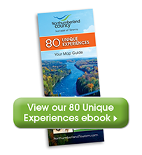 80 Unique Experiences eBook