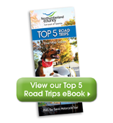 Top 5 Road Trips Brochure icon